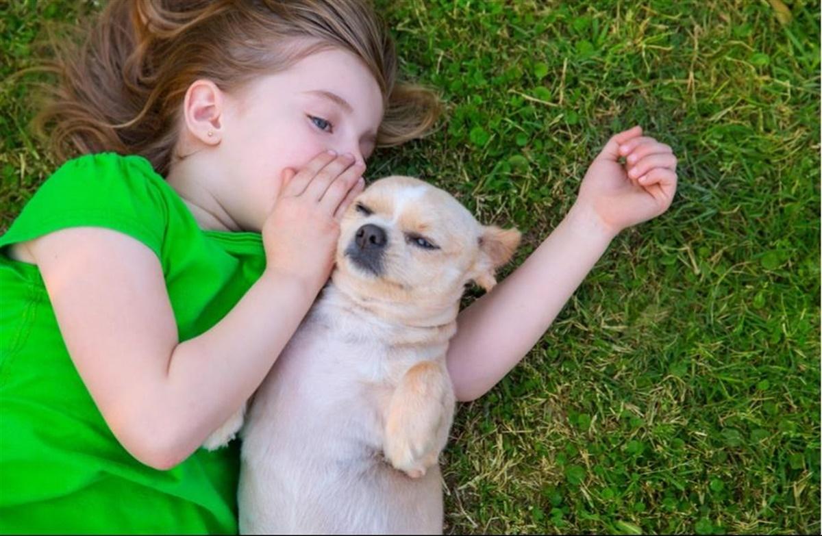hund og kvinde