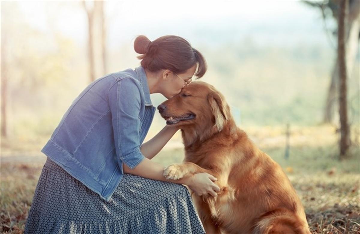 citater om hunde og mennesker 10 citater om det at have hund   Hunden.dk citater om hunde og mennesker